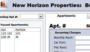 New Horizons rental properties database